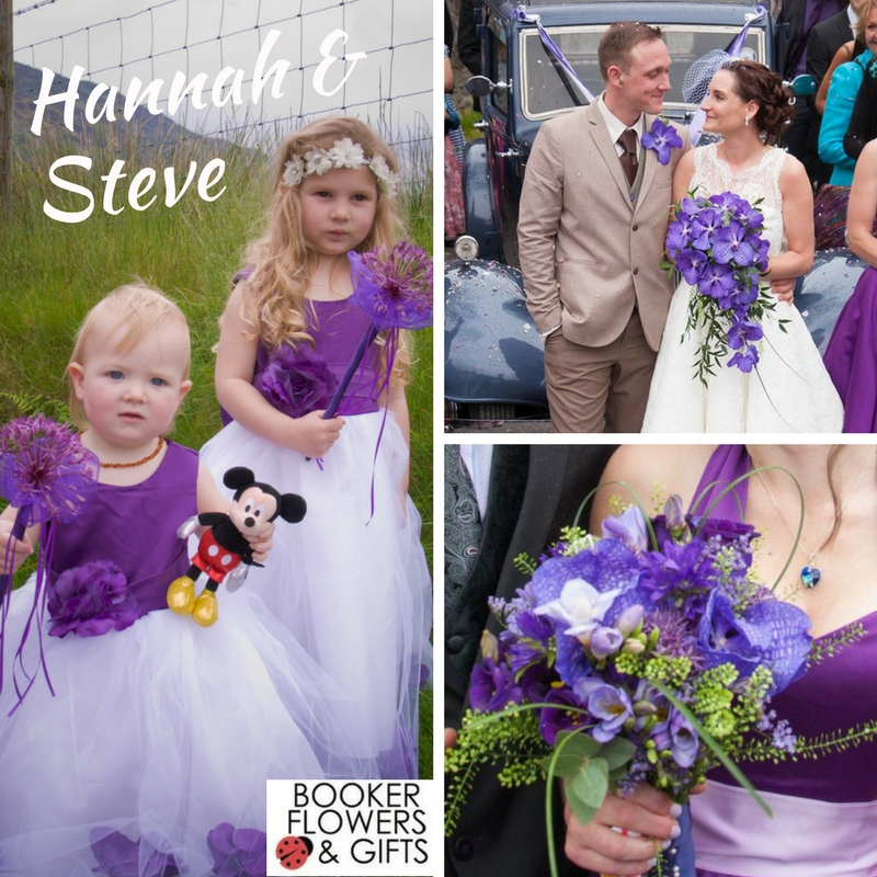 Wedding of Hannah and Steve