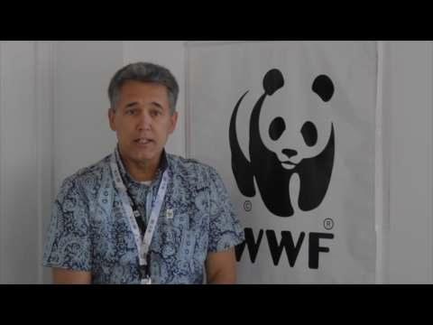 WWF en HÁBITAT III (DÍA 3): el desafío de la sostenibilidad urbana