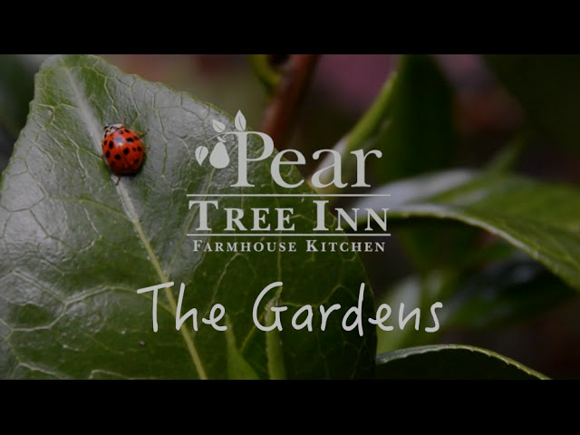 TUCKEDAWAY | The Pear Tree Gardens, Whitley, Wiltshire