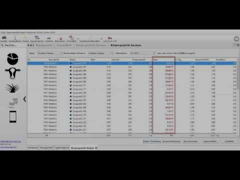 Gewichtsanalyse (Deutscher Sprache)