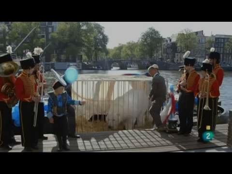 Documental: El humor como arma