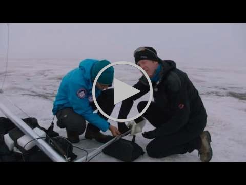 Noordpoolexpeditie 2015 deel 5: Weerstation plaatsen op gletsjer