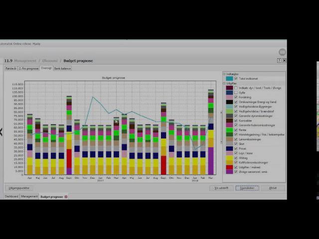 Budget prognosen (Dansk)