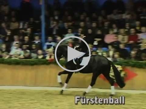 Furstenball (by Furst Heinrich x Donnerhall x Classiker)