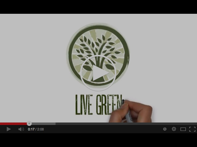 Moksha/Modo Yoga Pillar #3 - Live Green