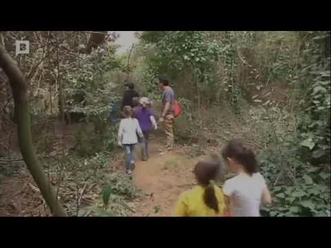 Reportatge BTV a Inforbarris: Visites Escolars a Can Soler
