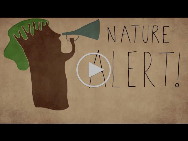 Chapter 2 - Five alarming facts about nature