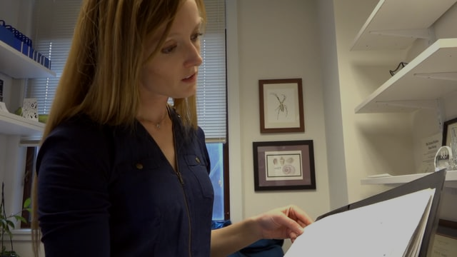 YIBS Donnelley Fellow | Dr. Erin Saupe