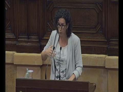 Rovira: ''Tenim l'oportunitat de posar Catalunya entre els països més moderns i nets d'Europa'