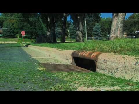 Parks Staff Keep Water Clean