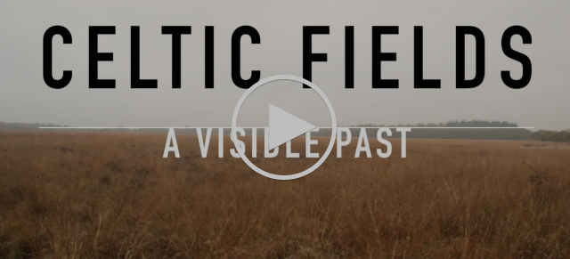 Celtic Fields: A visible past