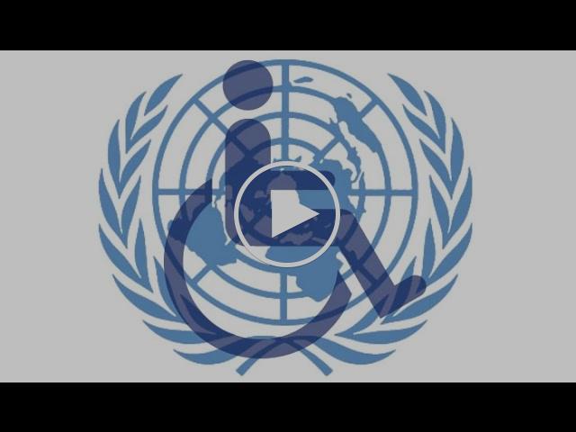 Jana Žitňanská: Dohovor OSN o právach osôb so zdravotným postihnutím