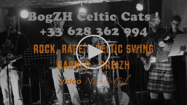 St Patrick 2015  - BogZH Celtic Cats ! - Rock 'n' Roll celtique punk folk