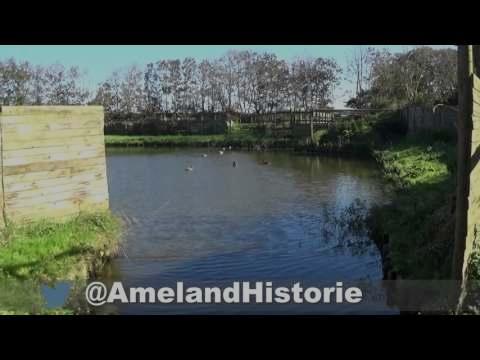 Eendenkooi op Ameland by Amelander Historie
