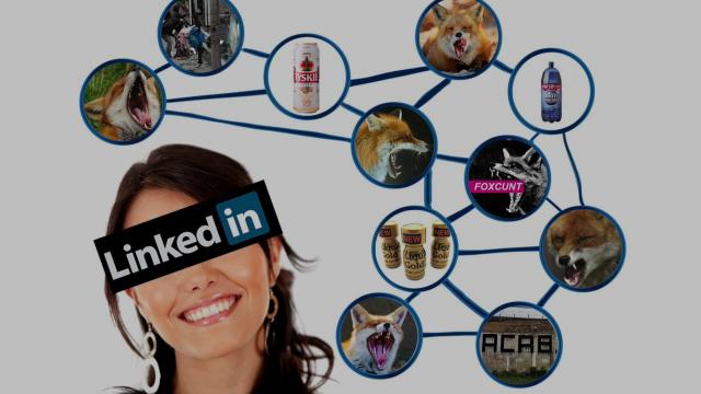 Foxcunt - LinkedIn