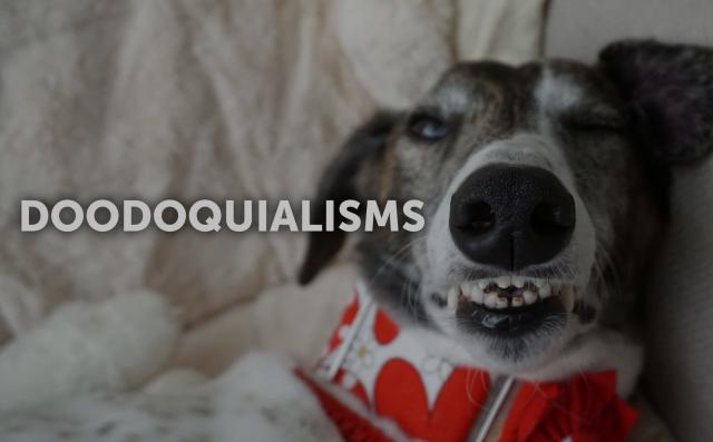 Doodoquialisms