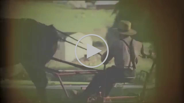 VedeTT - Tuer Les Gens (Official Video)