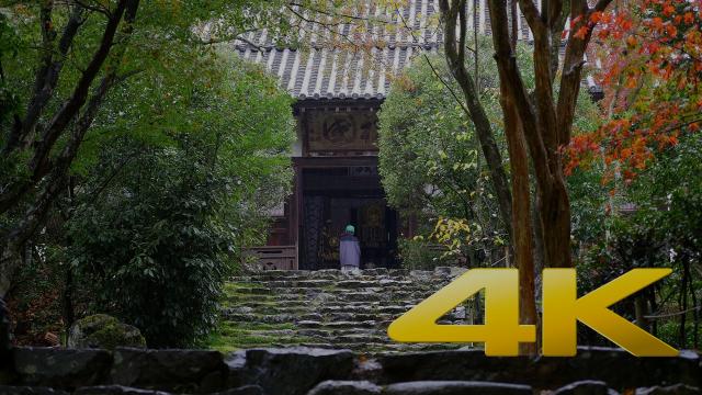 Kyoto Jojuji Temple - 浄住寺 - 4K Ultra HD