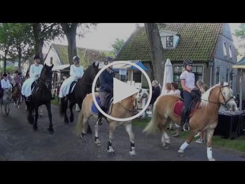 Optocht Ambachtelijke Dag te Ballum 2015 | by Amelander Historie