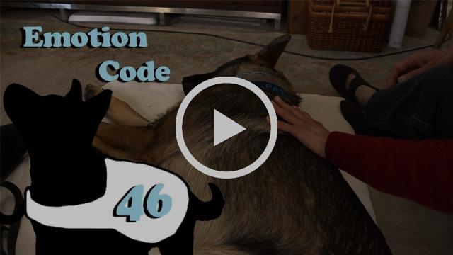 Emotion Code 2.0 E46