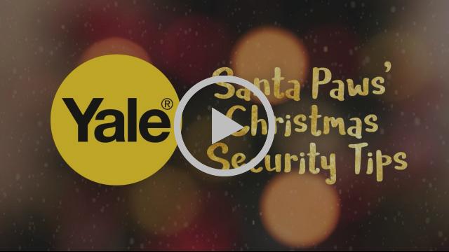 Santa Paws' Christmas Security Tips