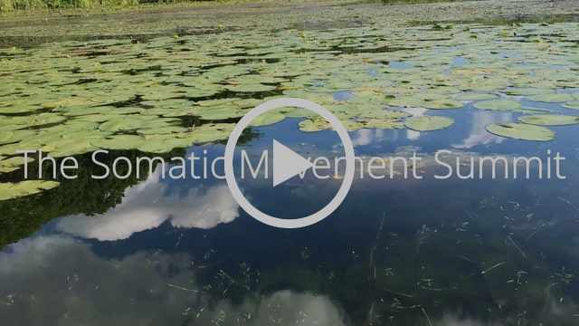 Somatic Movement Summit: Artful Embodiment™, Diving in the Waters of Creation