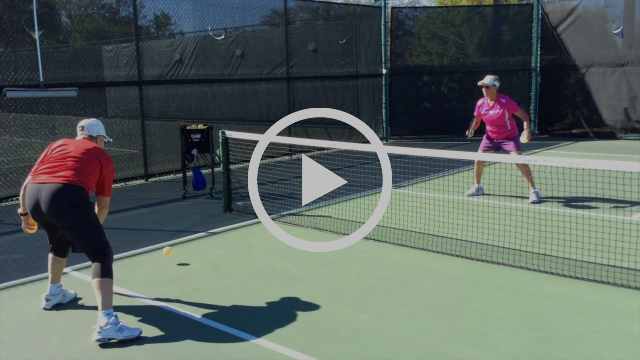 "Pickleball: ""Cat Paws"", Deb Harrison"