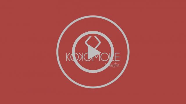 Kokomole - El chupete inteligente