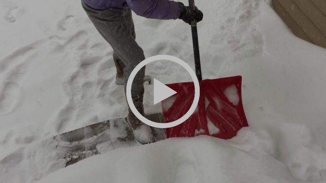 LisaAnn McCall of The McCall Method shows us how to shovel!