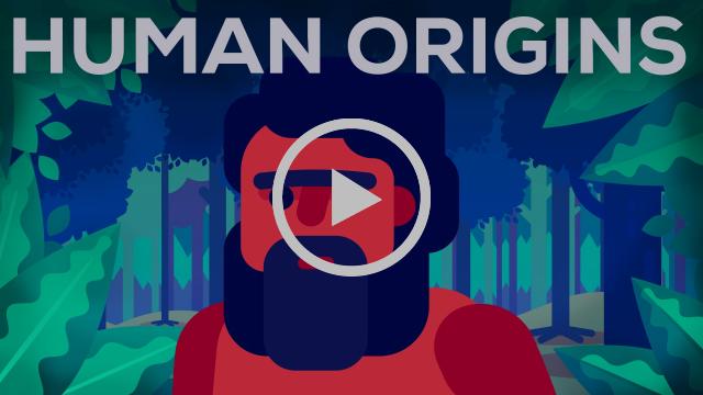 What Happened Before History? Human Origins
