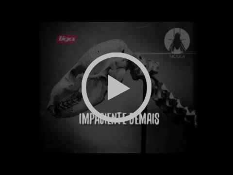 Paulinho Moska - Impaciente Demais (Audio Oficial)