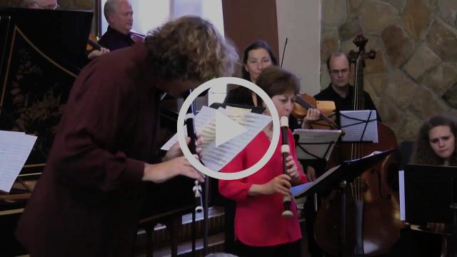 Georg Phillip Telemann, Concerto in e minor for Recorder, Flute and Strings, TWV 52 e:1 2: Allegro
