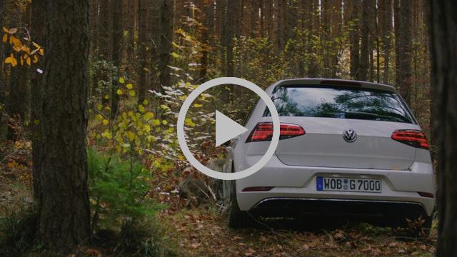 VW BOAR TVC45