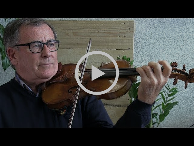 Geigen aus Mycowood: Interview mit Walter Fischli