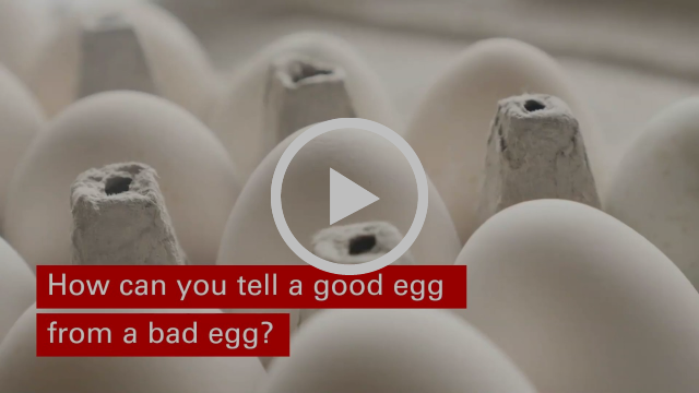 """Open carton of eggs with a question in text: """"How can you tell a good egg from a bad egg?"""""""