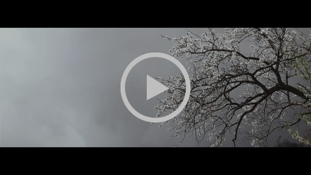 Beudon - La terre, l'homme et la vigne (Eng sub)