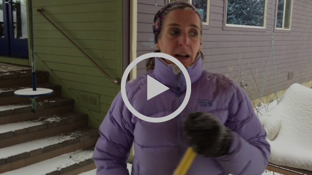 LisaAnn McCall of The McCall Method 'sweeps' away the snow