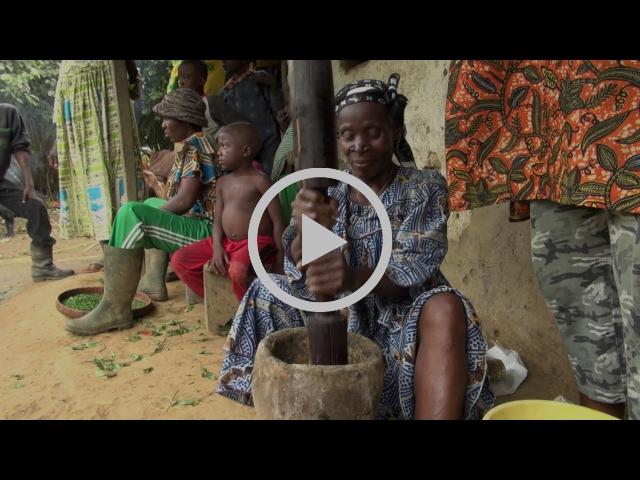 Talking gender before COP22