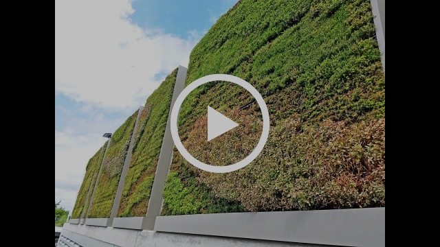 Yahoo! Commuting Coop Living Wall - Project of the Week 11/21/16