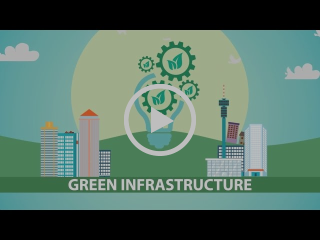 Green Infrastructure in the Gauteng City-Region