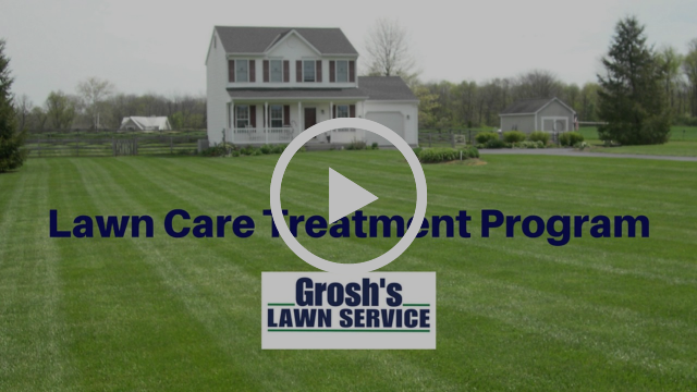 Lawn Care Treatment Program Hagerstown MD Williamsport MD Washington County Maryland