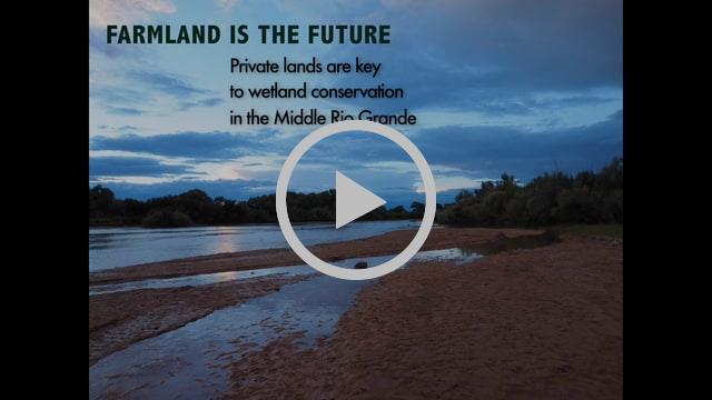 Farmland is the Future