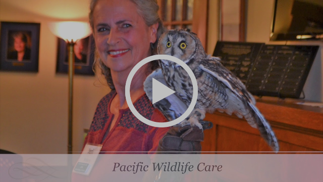 The Community Foundation San Luis Obispo County videos
