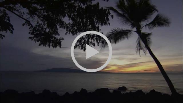 Maui | Hawaii | Agents of Aloha Video