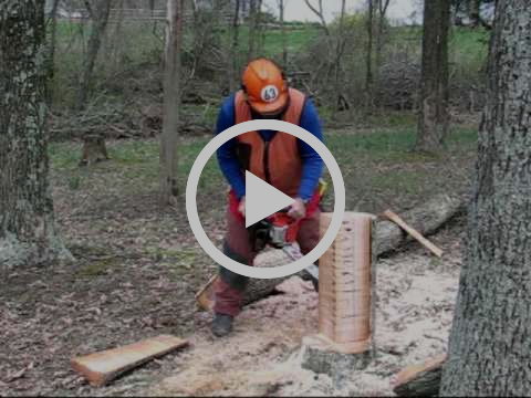Kickback Demonstration by Chainsaw Instructor Joe Glenn