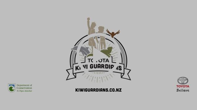 Toyota Kiwi Guardians