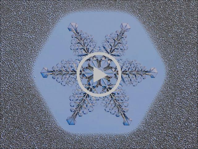 Birth of a Snow Crystal