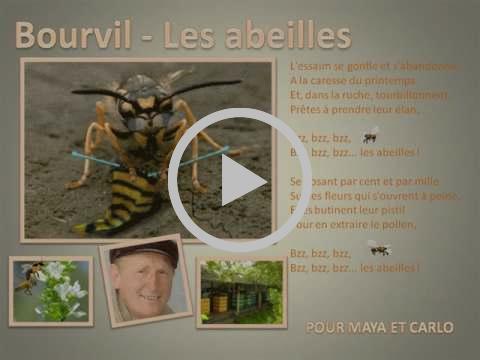 Bourvil (Les abeilles)